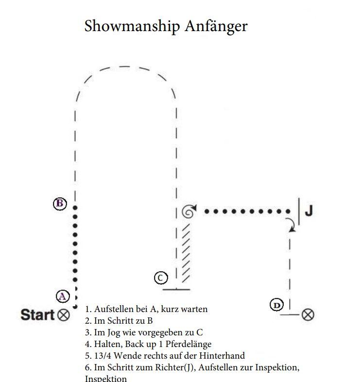 Showmanship – Anfänger